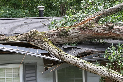 No matter what sort of storm damage your home might encounter, the pros at Thomas Quality Construction can handle it.
